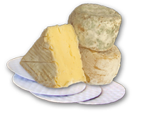 absorbent pads for wet cheeses