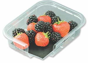 Absorbent fruit pads with anti-microbial/anti-bacterial properties